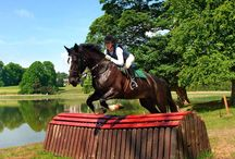 Equestrian Activities at Castle Leslie / As one of Europe's finest equestrian playgrounds, Castle Leslie Estate offers memorable horse riding holiday experiences for riding enthusiasts of all levels.