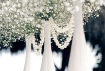 White, Silver, Gold Weddings / Make your wedding day shine with the brilliance of white, the gleam of silver, or the regality of gold