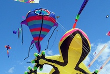 Festival Kites / Festival Kites. There's nothing like a kite festival to showcase the very latest and best in the world of kite design. Here are images from all kinds of kite festivals from all around the world... T.P. (my-best-kite.com) (cometas, drachen, cerf-volant)