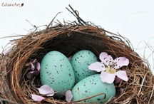 Shades of Turquoise and Robin's Egg Blue / From robin's egg blue to teal. / by Barbara Stevens