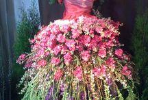 Tuin-bloemen en planten