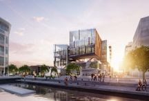 Aucklands futures