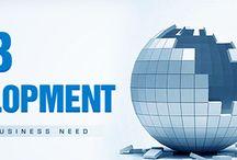 Affordable Web Development company / Whaledone is a Professional Web Development,Web designing,SEO,SMO,Internet Marketing company