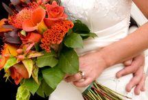 My Best Friend's Wedding  / by Kelsey Cook
