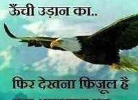 hind qotes
