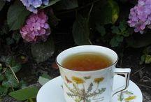 gyógynövény/tea