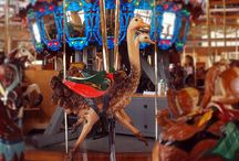 Carousels / by Claudia du Plessis