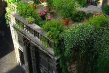 Enchanted Gardens ...