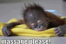 Funny massage pictures