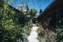 Garden / by Hillary Newman