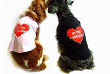 Moda4zampe / Accessori, abbigliamento per cani e gatti