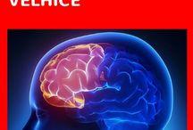 exercício  para  mente