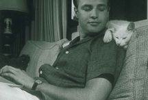 Famous People with pets.