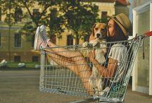 Puritito amor canino