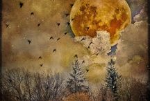 Fly Me To The Moon / by Mary Stang