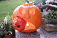 Halloween / dýně, dekorace