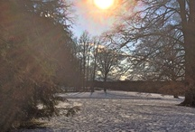 Bayreuth im Winter