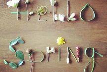 season spring 봄 / spring 봄
