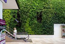 Verticaal groen | groendaken / Inspiratie voor groene daken en wanden