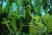 Afterlife / I love old cemeteries. I think it's the history and the stories they can tell. The respect their ancestors gave those who were buried there. They fascinate me.