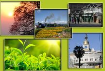 Travel Services / We provide you a complete online taxi booking service throughout Darjeeling ,Sikkim , Kalimpong ,Mirik and other surrounding places. Our main objective is to work for customer satisfaction , We plan and manage tours and taxi's ranging from minimal budget to luxurious schemes.Our primary job is to plan tours and selecting holiday packages for Darjeeling