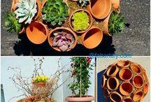 Pots flower