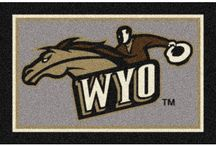 Why Visit Wyoming? / Wyoming is beautiful.  It has so many natural resources and beautiful open spaces.  The people are friendly.  It's just a nice place to live or visit.
