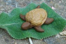 Crafts - Walnut Shells / by Marie Nordgren