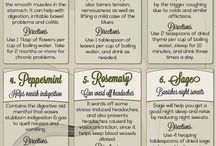 Health Benefits of Tea! / Here's how you can help yourself with tea!