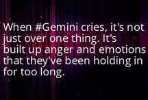All about the Gemini in me