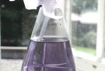 Diy lavender ideas