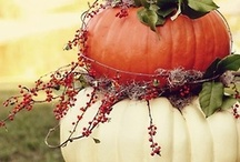 Fall/ Halloween Decorations / by Emily Holsclaw