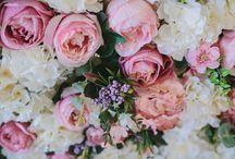 Flowers - my