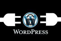 WordPress / Gestor de contenido WordPress