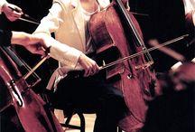 Cello cello cello