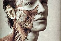 Art of Science and Anatomy ❤