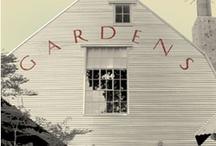 Gardens for Peace / by Tirene Harding-Mitzel