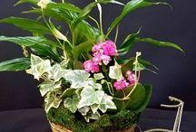 Bouquets de fleurs pour décorer / Voilà, quelques exemples des travaux réalisés par nos clients. Jetez un coup d'œil et prenez des idées!