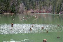 Gyilkos tó