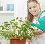 Health plants