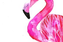 Flamingo / Vögel, Pink