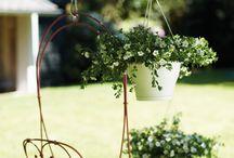 Garden / garden, garden ideas, nature, green, eco, design