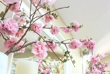Forår