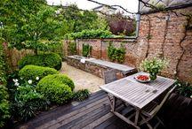 Interior_Garden and terrace
