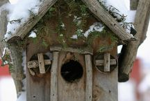 bird houses / by Diane Wood