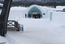 Sweden, Ice Hotel / 2015 / by KC