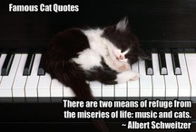 Music and Cats / There are two means of refuge in life...music and cats. / by Karyn Fox