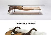 Idées pour les chats