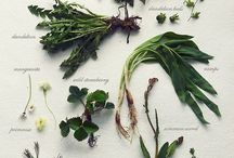 Edible landscapes / plants U can eat ;)