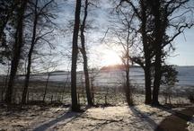 Der Saar-Niedgau Fotos ...